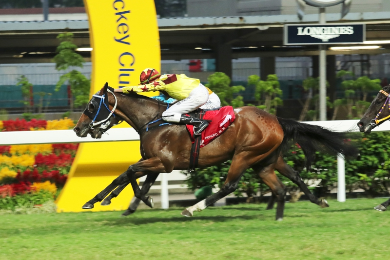 Southern Legend scores a strong last-to-first win in a Class 2 race over 1200m at Happy Valley last start.