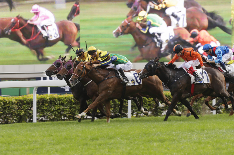 Blizzard (in green) wins a Class 1 event at the LONGINES Hong Kong International Race meeting last year.
