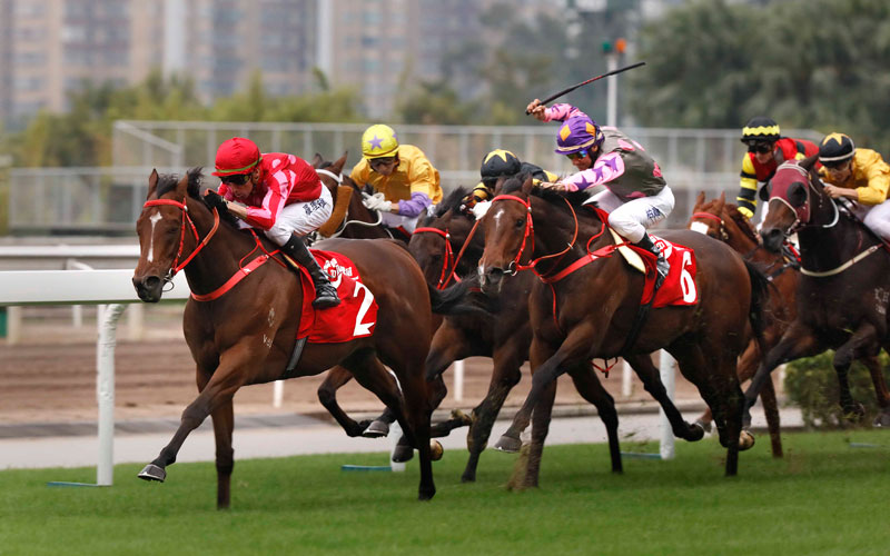 Mr Stunning (red cap) drew 4 in the LONGINES Hong Kong Sprint.