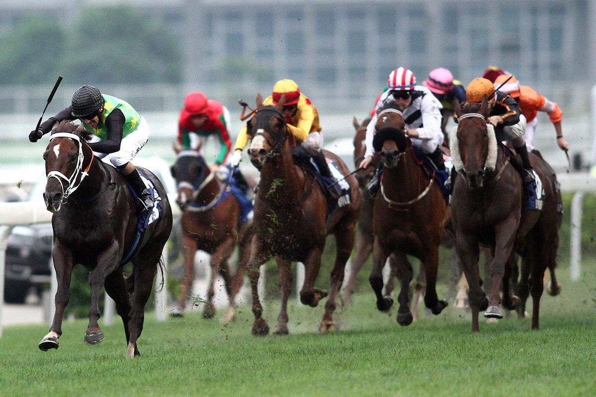 「繽紛會」於2014年冠軍一哩賽的末段加速拋離對手,擊敗「步步友」(橙帽)奪魁。