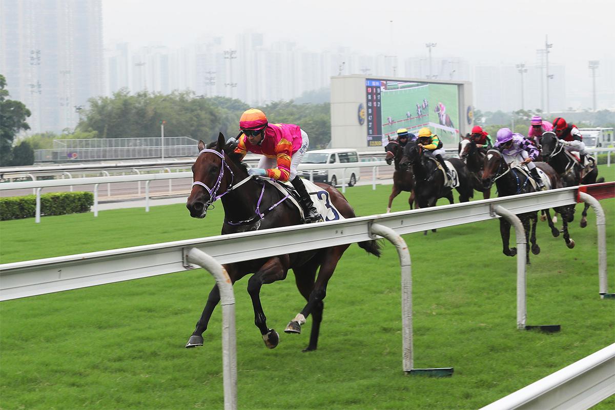 由莫雷拉主策、隸屬蘇偉賢馬房的「同得福」,勝出2017/18年度馬季首場賽事。