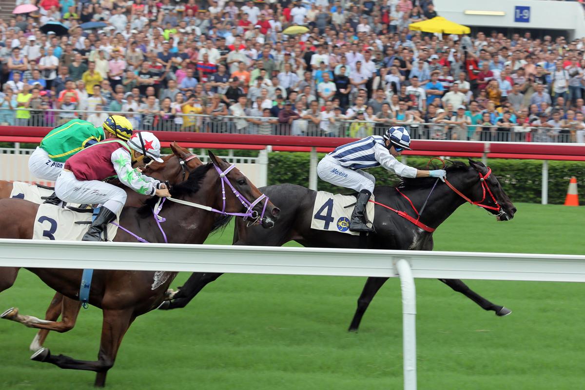由沈集成訓練、莫雷拉策騎 的「四季旺」(4號馬),勝出今日於沙田馬場舉行的香港特區行政長官盃。