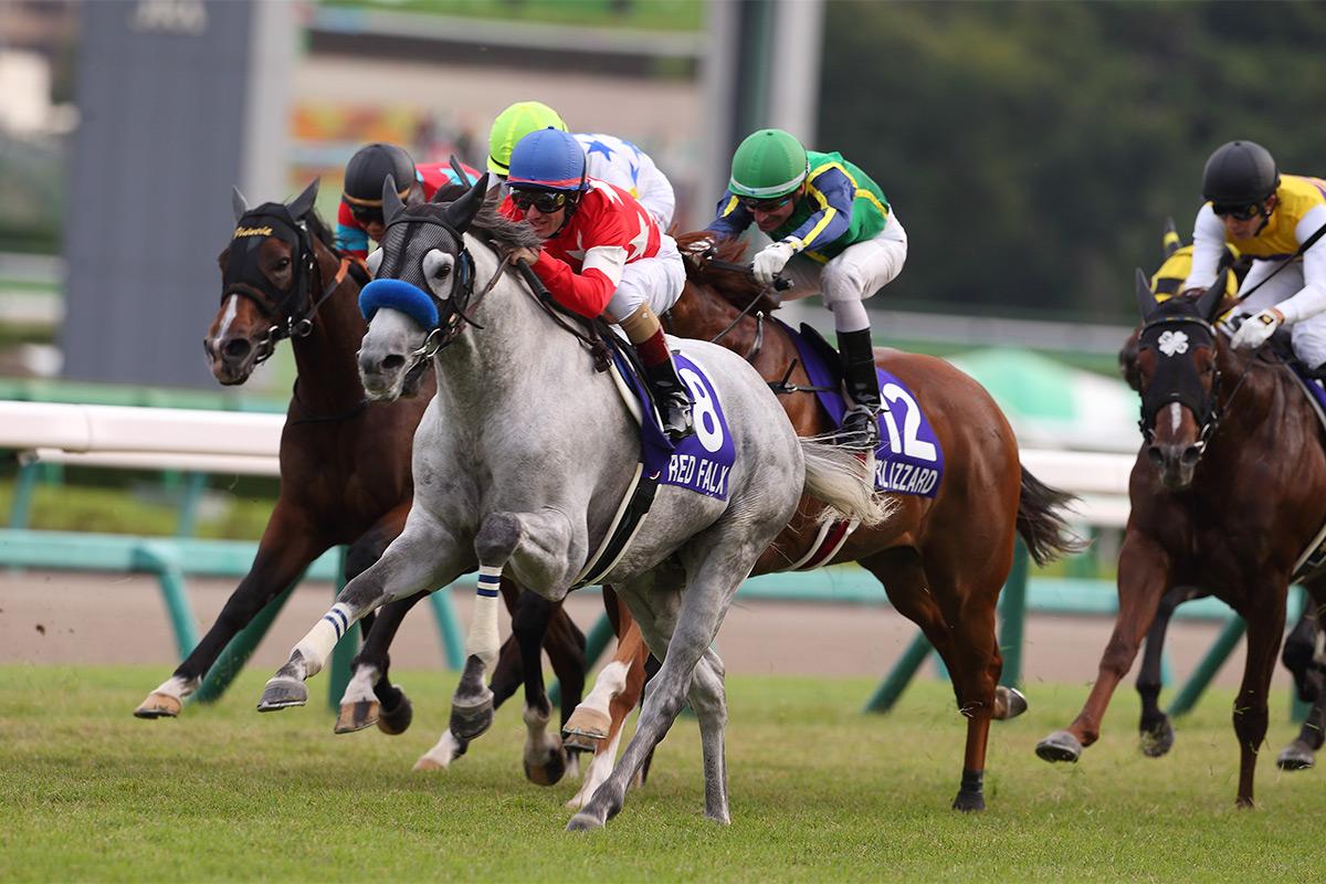 短途馬錦標(國際一級賽 - 1200米)今日下午(10月1日)於日本中山競馬場舉行,由尾關知人訓練、杜滿萊策騎的「彎刀赤駿」(8號馬)勝出。