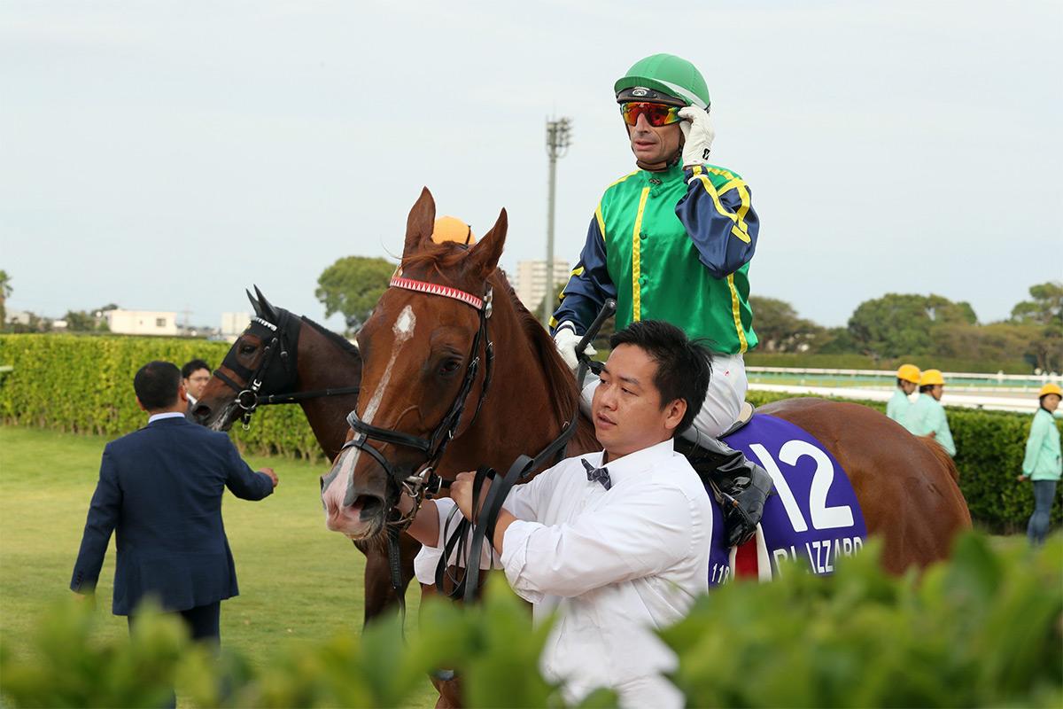 「有得威」在短途馬錦標中跑獲第五名。