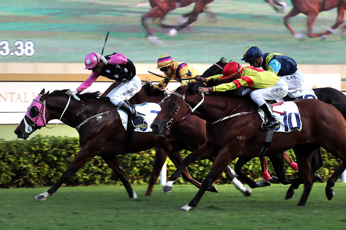 由約翰摩亞訓練、梁家俊策騎的「美麗傳承」(7號),勝出今日於沙田馬場舉行的國際二級賽東方表行沙田錦標(1600米)。