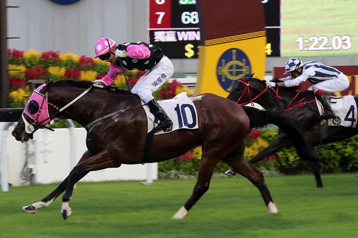 由約翰摩亞訓練、梁家俊策騎的「美麗傳承」(10號),勝出今日於沙田馬場舉行的國際三級賽慶典盃(1400米)。