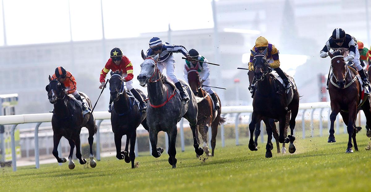 何良訓練的「五十五十」(7號馬 – 藍白綵衣),於田泰安胯下勝出今日於沙田馬場舉行的第一班賽事其士盃(1600米)。