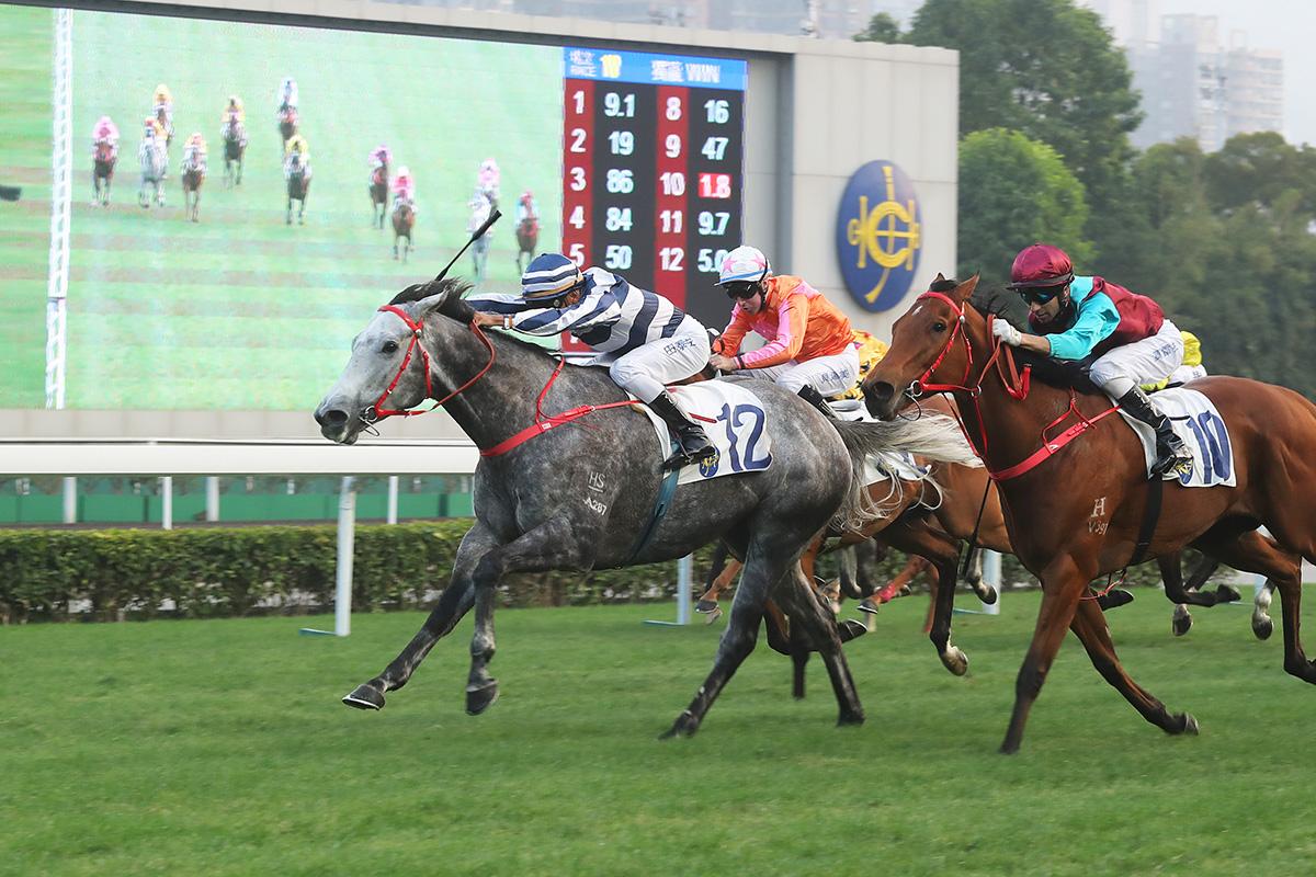 華商會挑戰盃今日在沙田馬場舉行,「五十五十」(12號)在田泰安胯下勝出這項國際三級賽 (1400米讓賽)。
