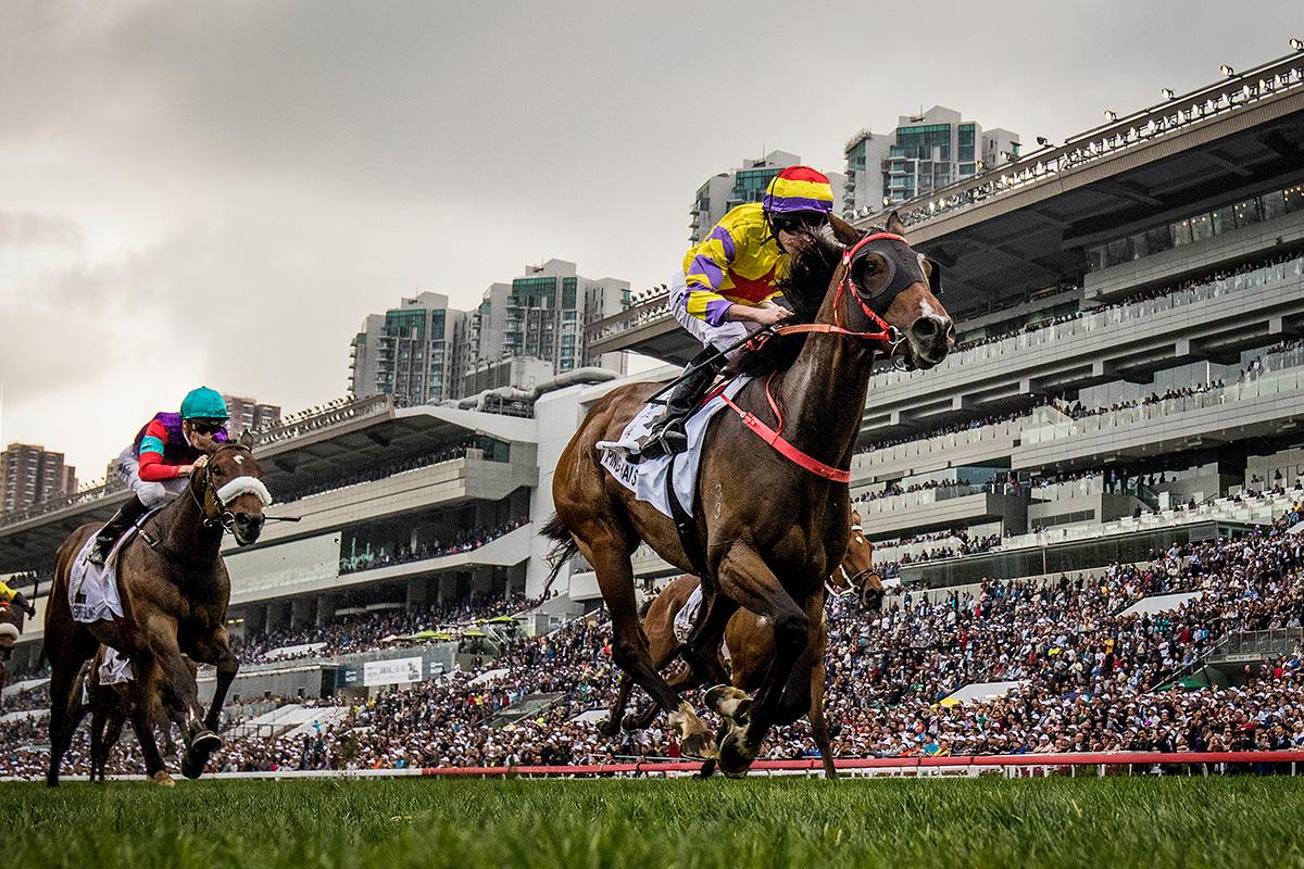 寶馬香港打吡大賽今日於沙田馬場舉行,由蔡約翰訓練、莫雅策騎的「平海福星」(3號馬)於直路上施展強烈後勁,一舉趕過其他對手率先衝過終點,勝出此項四歲馬經典賽事系列尾關賽事。