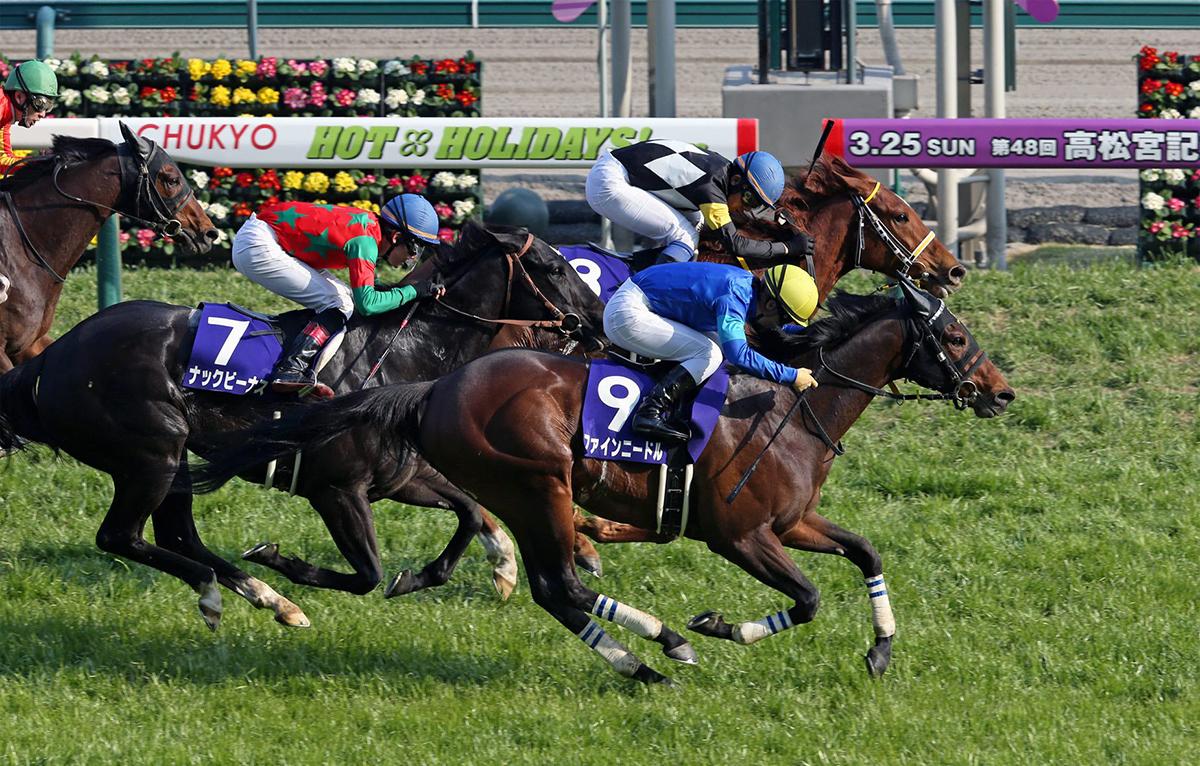 高松宮紀念賽冠軍「鐵杵成針」(9號)將進軍主席短途獎。