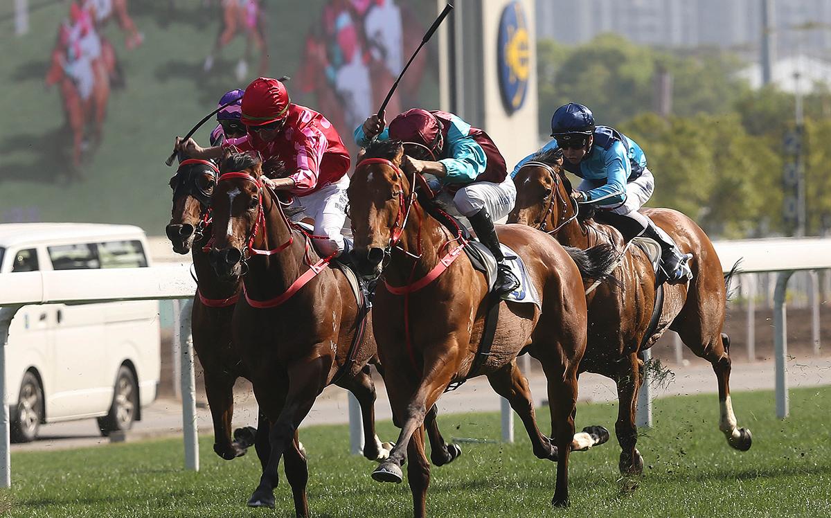 由蔡約翰訓練、莫雷拉策騎的「爭分奪秒」(2號馬),勝出今日於沙田馬場舉行的二級賽短途錦標(1200米)。