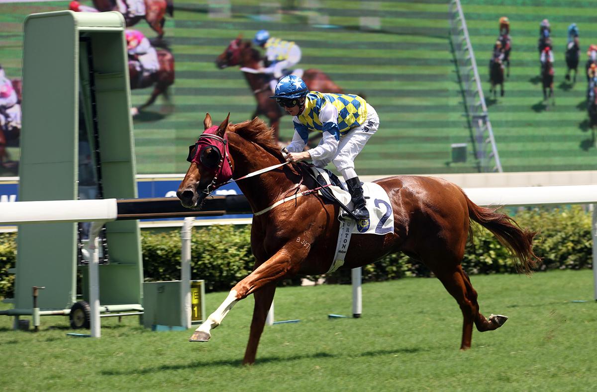 競駿會十週年紀念盃今日於沙田馬場舉行,由約翰摩亞訓練,潘頓執韁的「錶之太陽」(2號馬)勝出此項途程1400米的賽事。
