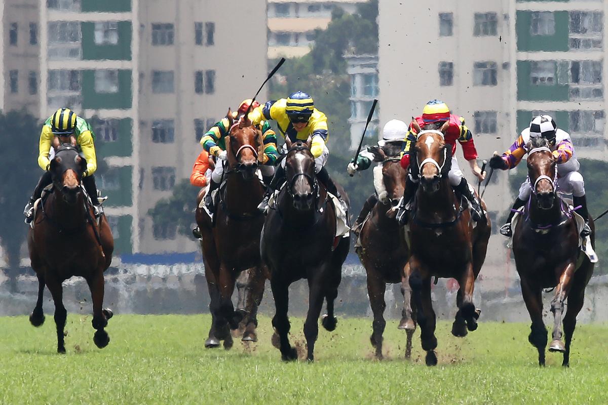 騎師史卓豐為苗禮德訓練的「瑩之光」(黃色綵衣)打開在港勝門。