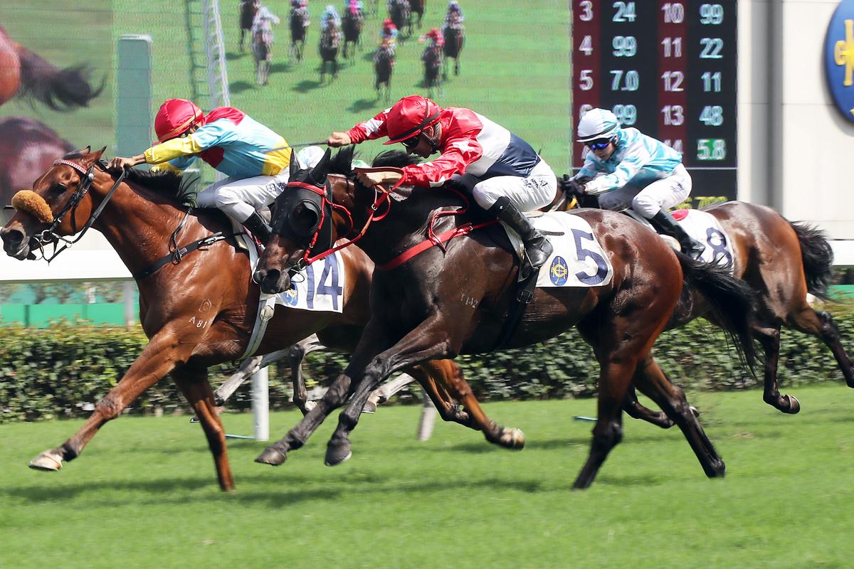 莫雷拉憑「三思飛駒」勝出第五場賽事,全日取得兩場頭馬。