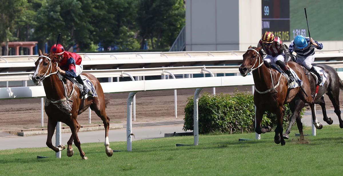 今日於沙田馬場舉行的獅子山錦標。由告東尼訓練、莫雷拉策騎的「中華盛世」勝出此項途程1600米的國際三級賽。