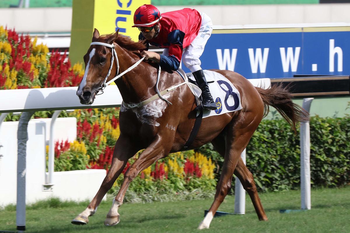 「中華盛世」在莫雷拉胯下勝出獅子山錦標。