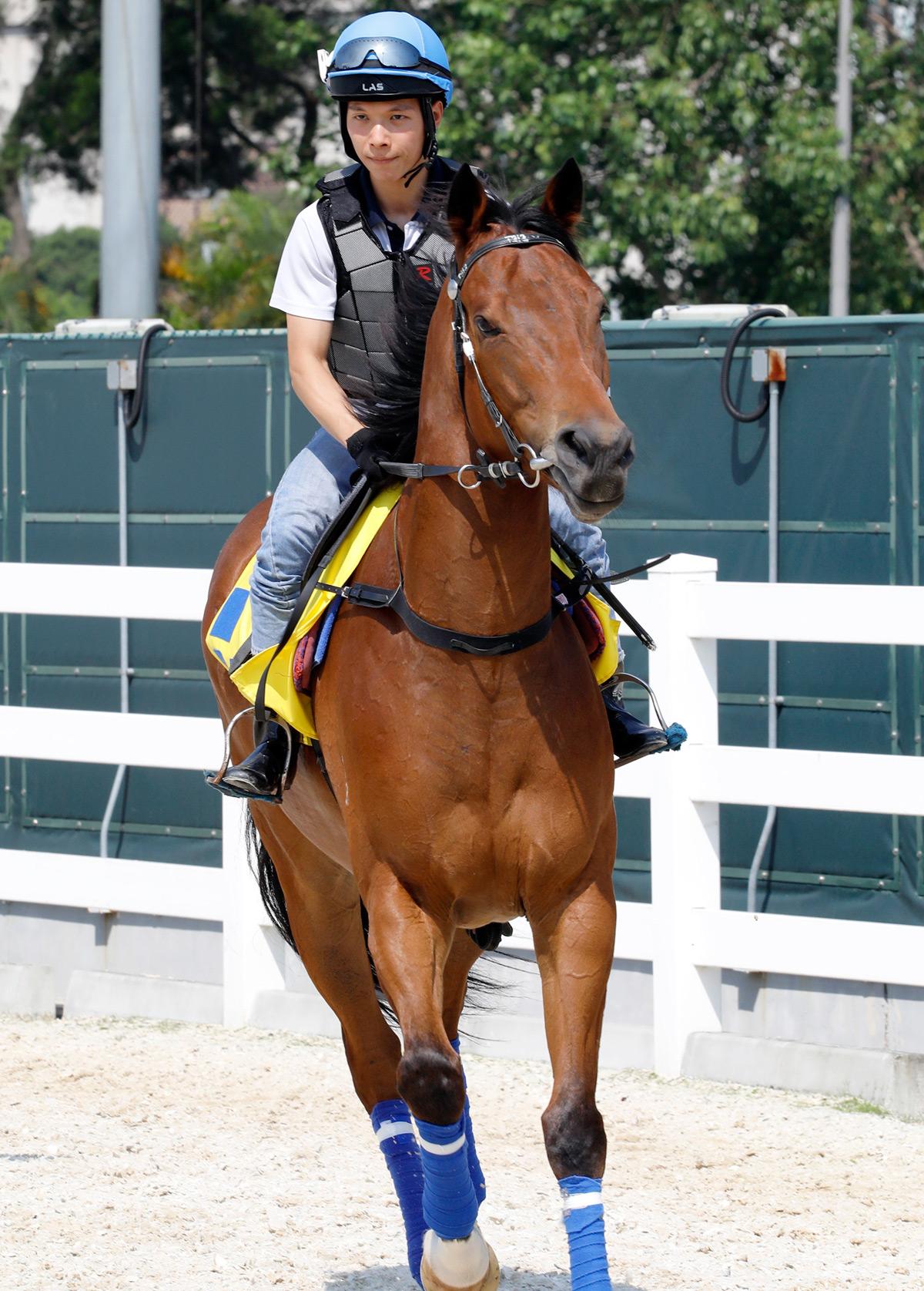 見習騎師黃俊及賽事見習學員示範策騎及照顧馬匹。
