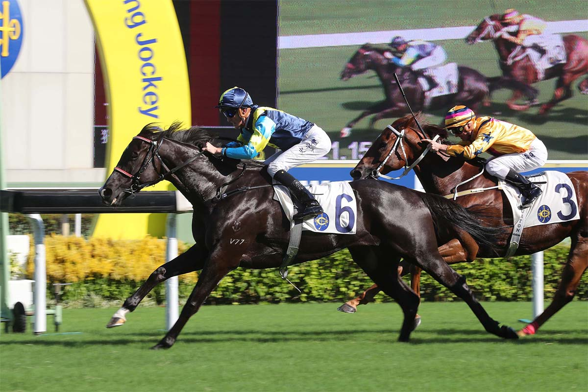 Jolly Banner (No.6) gets the better of Winner's Way (No.3) to take the Class 1 Kwangtung Handicap Cup at Sha Tin Racecourse today.