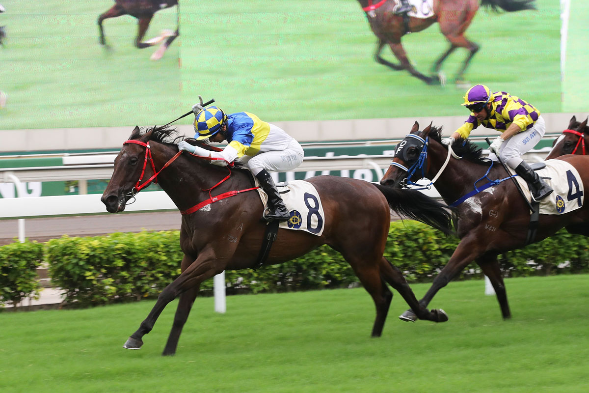 Joao Moreira makes it five wins aboard Yourthewonforme, who provided new trainer Frankie Lor with his first victory as a handler.