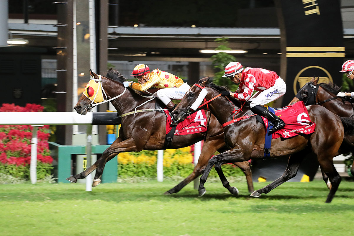 Gold Land (4) earns a first Hong Kong success under Sam Clipperton.