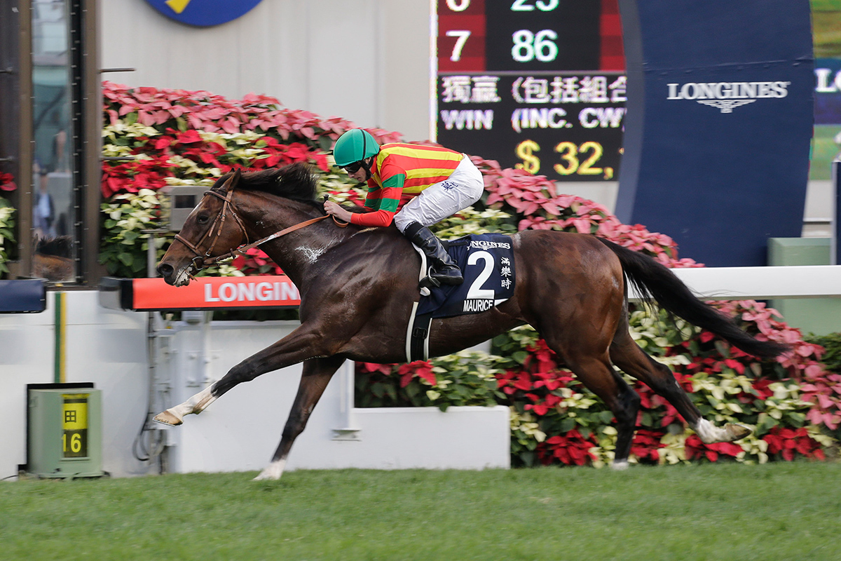 Maurice takes another HKIR win in the LONGINES Hong Kong Cup last year.