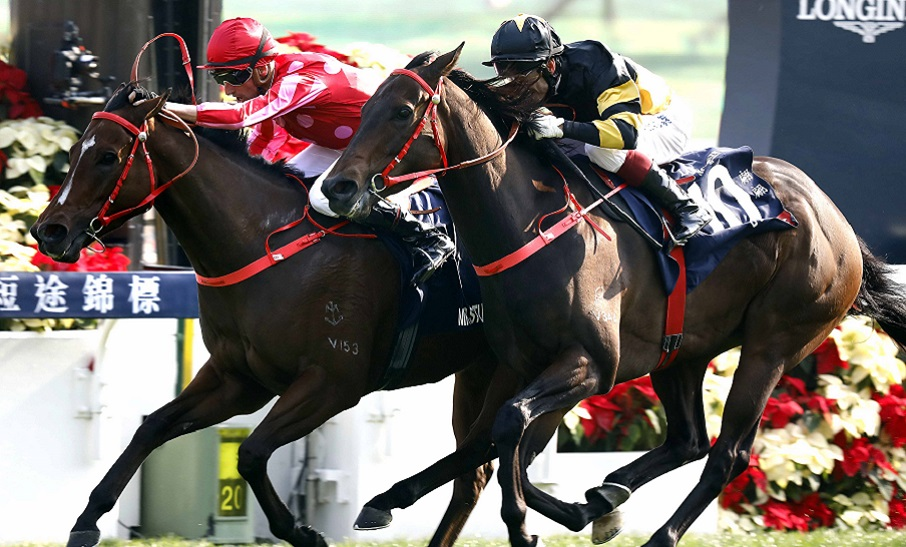 Clipperton's confident after picking up the Mr Stunning ride