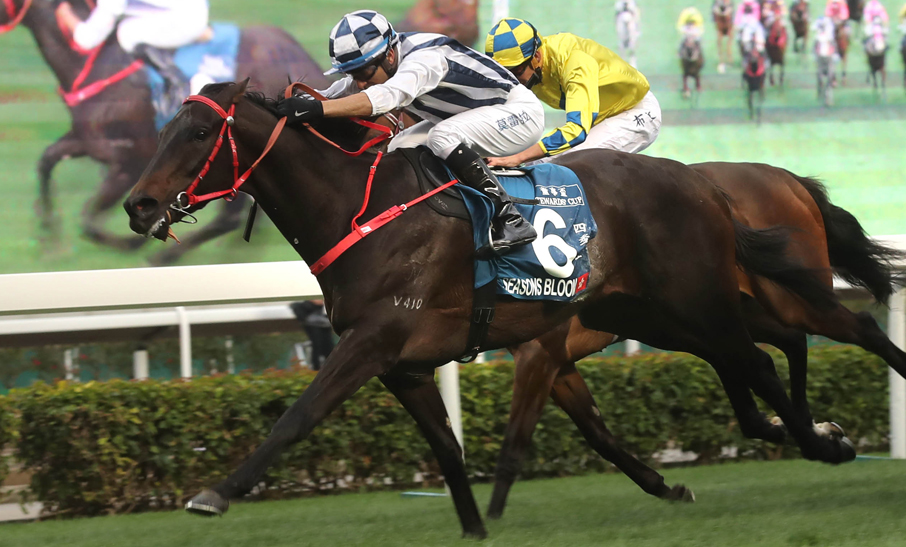Seasons Bloom has Moreira and Shum in positive accord
