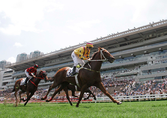Photo Release – Sha Tin Vase