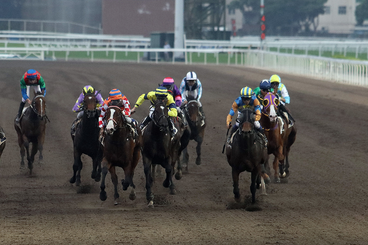 Me Tsui and Vincent Ho each notch doubles as Go Public (in blue/orange) takes Race 9.