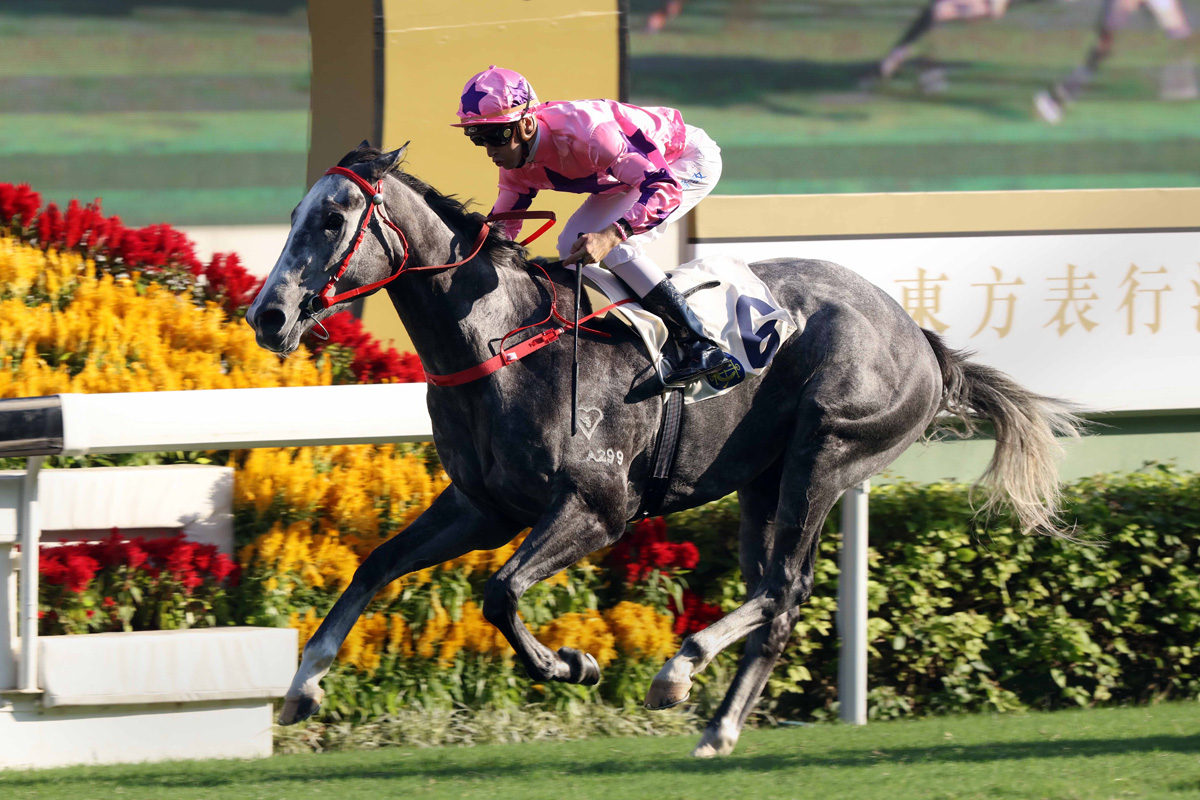 Hot King Prawn hits the line to continue John Size's domination of Hong Kong's big sprints.