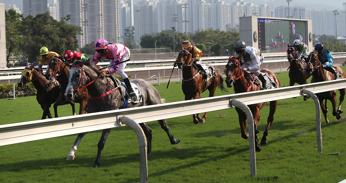 Hot King Prawn (pink) defeats a field that included last season's Champion Sprinter Ivictory (grey cap), G3 victor Winner's Way (yellow cap, centre) and 2015 National Day Cup winner Not Listenin'tome (blue cap).