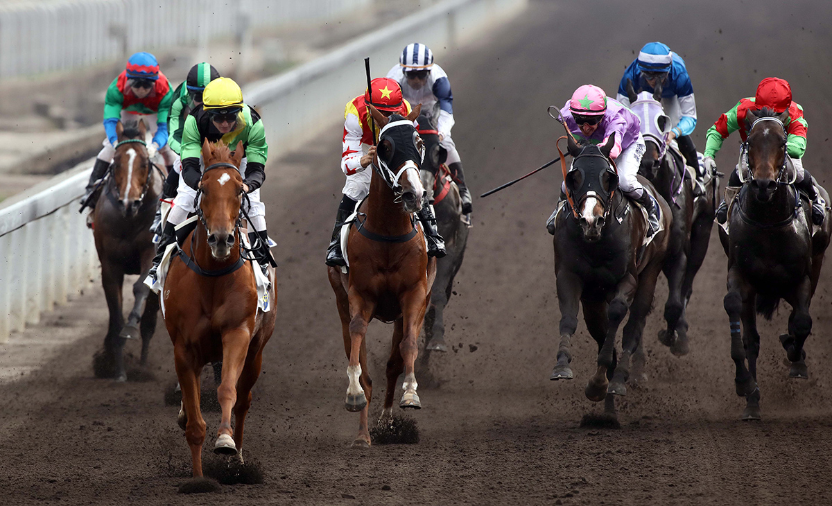 Ugly Warrior (yellow cap) scores his fourth Hong Kong win last time.
