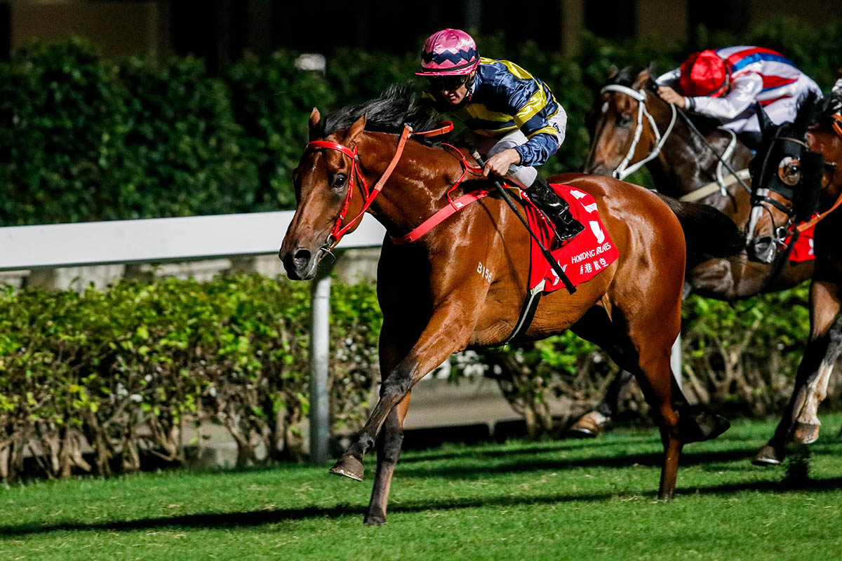 Insayshable wins on his return at Happy Valley.