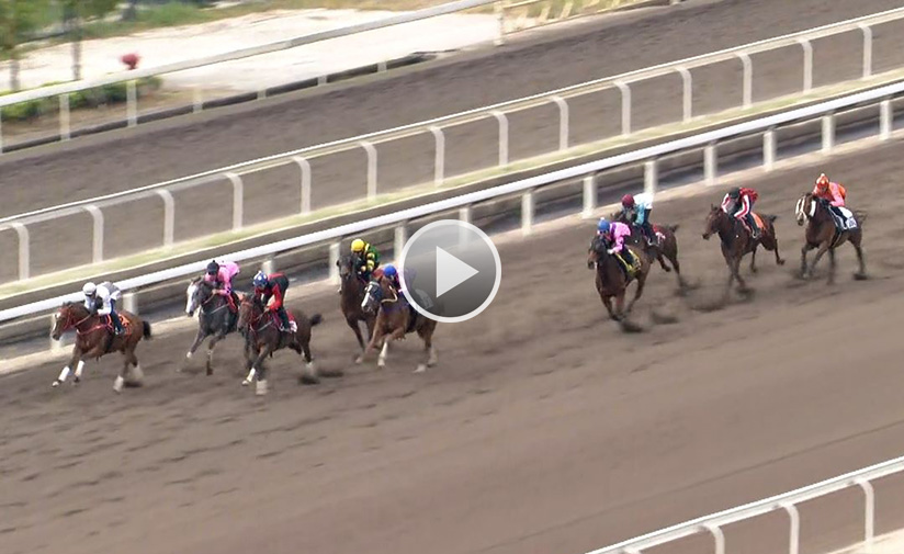 Ivictory and Hot King Prawn (under Sam Clipperton) dominate the finish to a recent barrier trial.