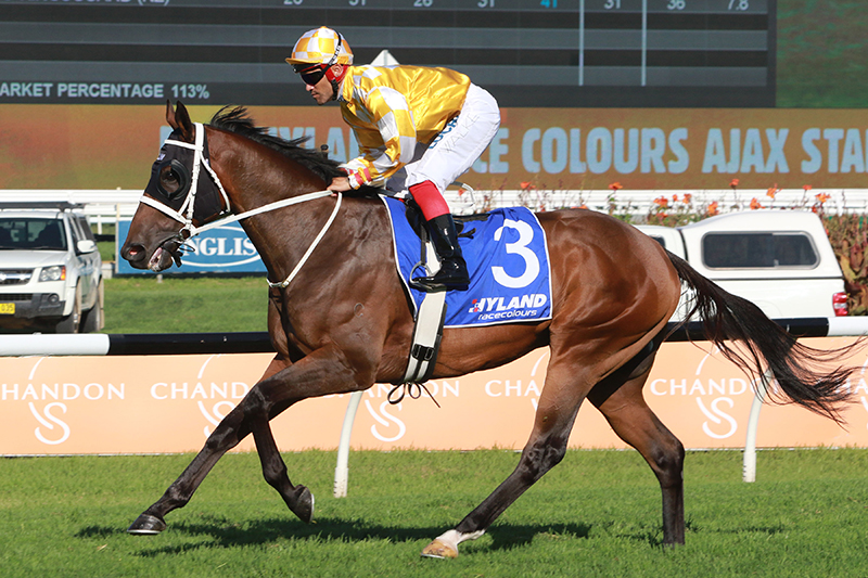 Comin' Through wins the G2 Ajax Stakes at Rosehill Gardens.