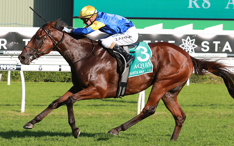 Santa Ana Lane bids to become Australia's second Chairman's Sprint Prize winner.