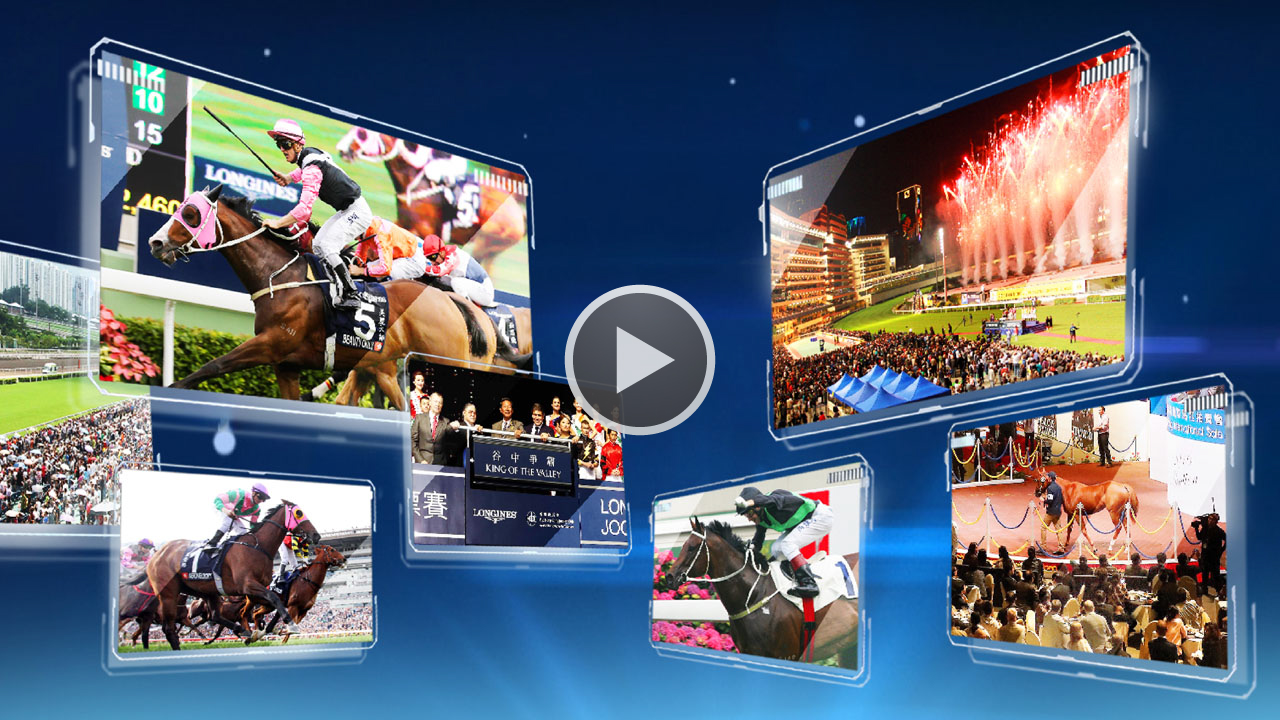 Hkjc horse race betting limited coupons joelmir betting bandeirantes ao