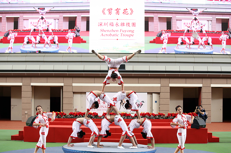 The famous Shenzhen Fuyong Acrobatic Troupe catches the audience's attention with their impressive performance combining dance and balancing skills inspired by traditional paper-cutting.