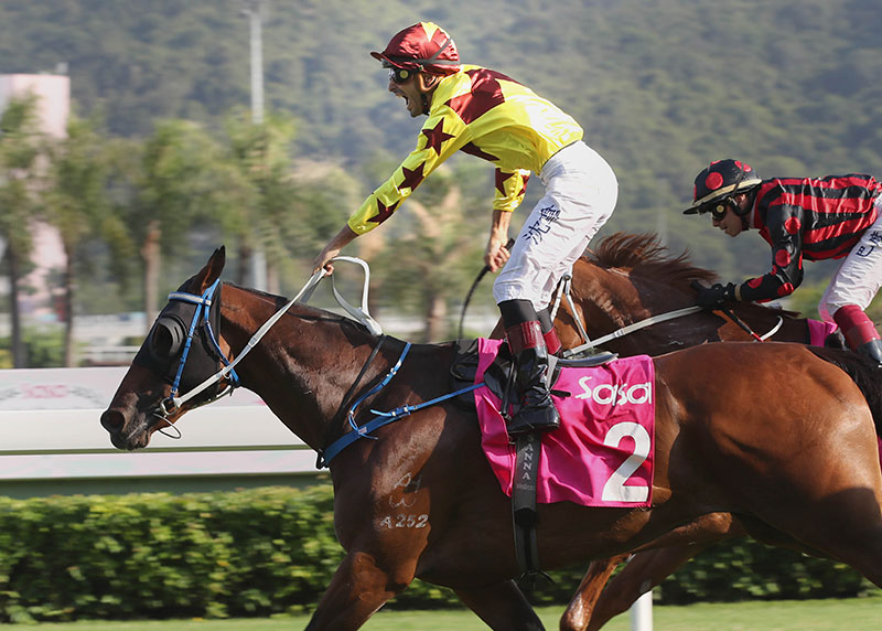 Southern Legend earns a deserved feature win under Alberto Sanna