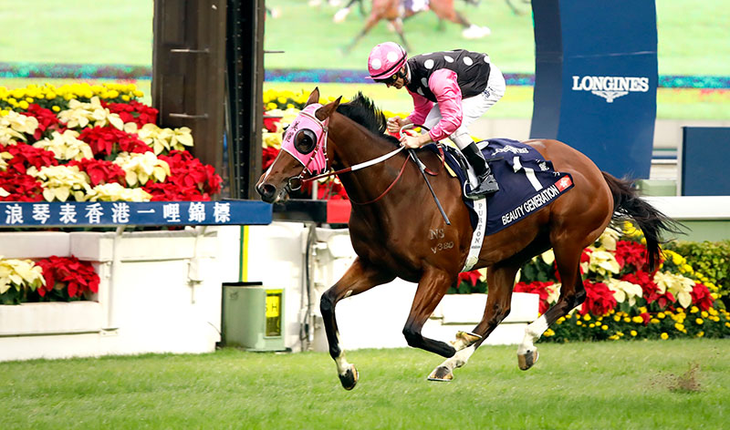 Beauty Generation is shooting for a third win in the Hong Kong Mile.