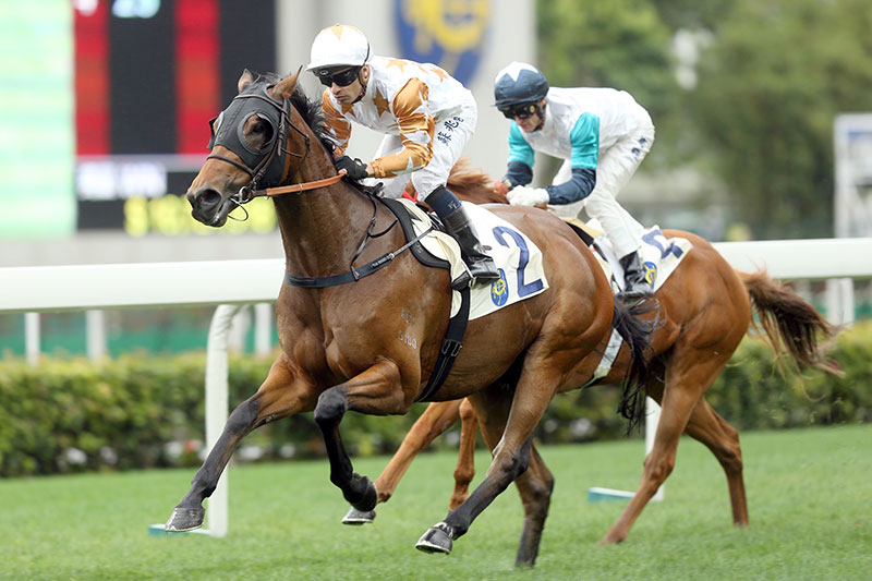 Wishful Thinker is a six-time winner in Hong Kong.