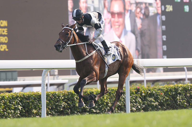The Tony Cruz-trained Exultant (No.1), ridden by Zac Purton, takes the G2 Jockey Club Cup (2000m) at Sha Tin Racecourse today.