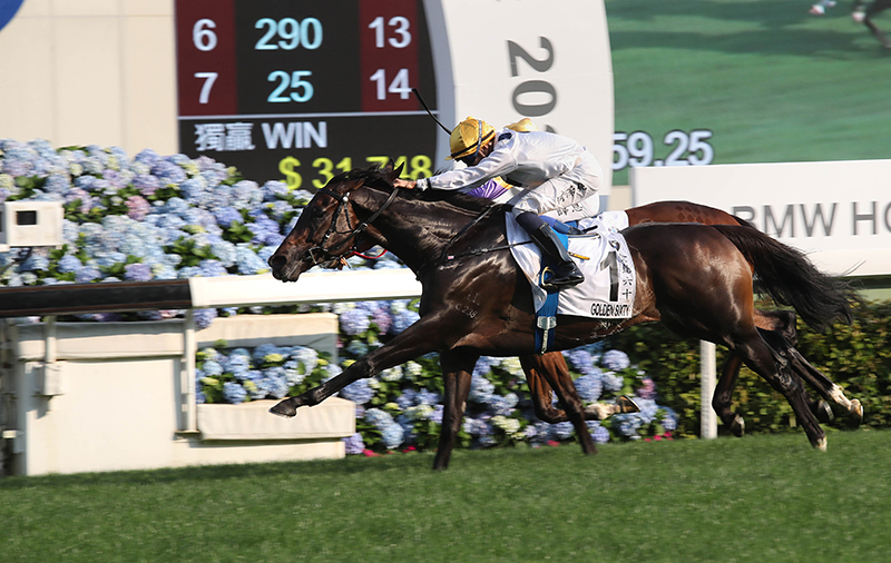 Hong Kong Derby victor Golden Sixty bids to maintain his unbeaten record this term in the FWD QEII Cup.