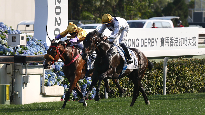 Blake Shinn and Playa Del Puente (inside) go close in the Hong Kong Derby.