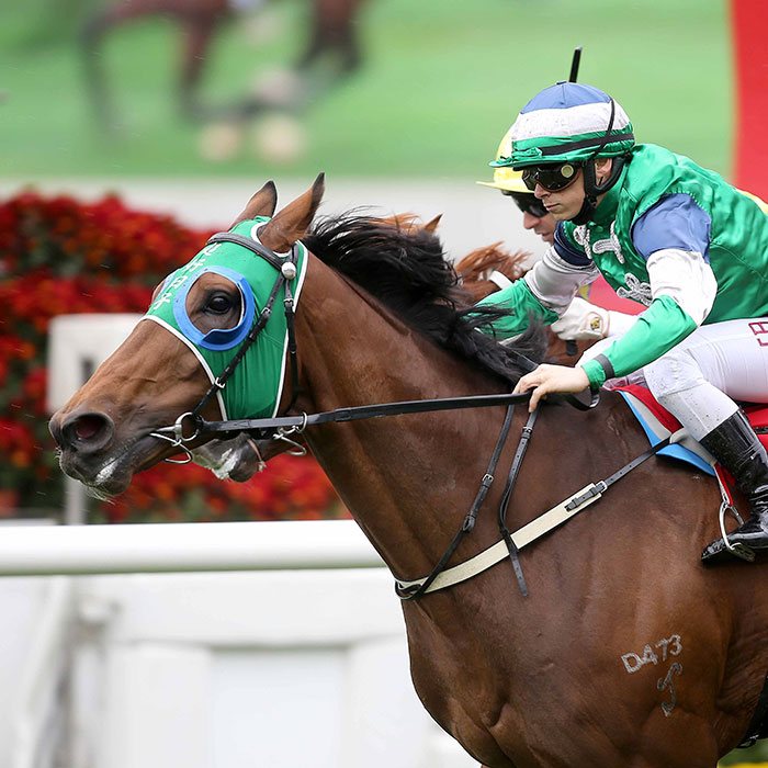 Chinese New Year Cup Race Meeting