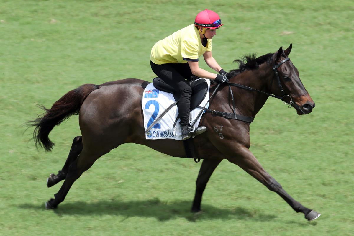 編號2拍賣馬(父系Darci Brahma,母系Myback)今早成為試跑示範的焦點之一。