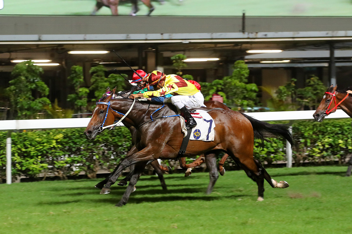 Australian import Southern Legend opens his Hong Kong account under Karis Teetan.