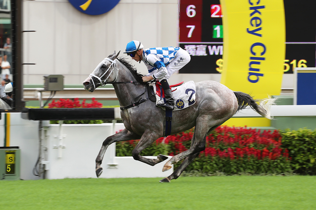Silverfield gave Michael Freedman a double from just two runners at Sha Tin on Sunday, winning the Class 4 Nam Sang Wai Handicap with Chad Schofield in the plate.