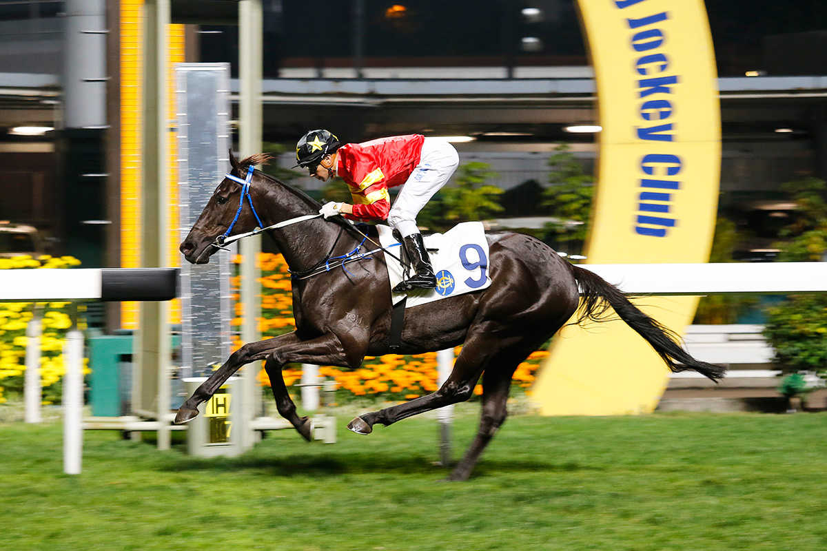 Marvel Hero won the Class 1 Happy Valley Vase Handicap impressively in March.