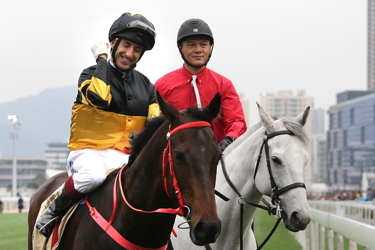 Trained by John Size and ridden by Olivier Doleuze, D B Pin (No. 2) wins the Centenary Sprint Cup at Sha Tin Racecourse today.
